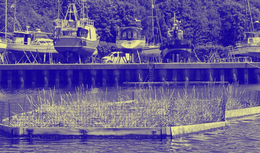 Copy of RQ Floating ecosystem