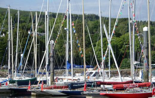 Boats at Rhu marina all dressed up and ready to go