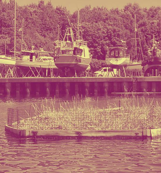 Floating ecosystem