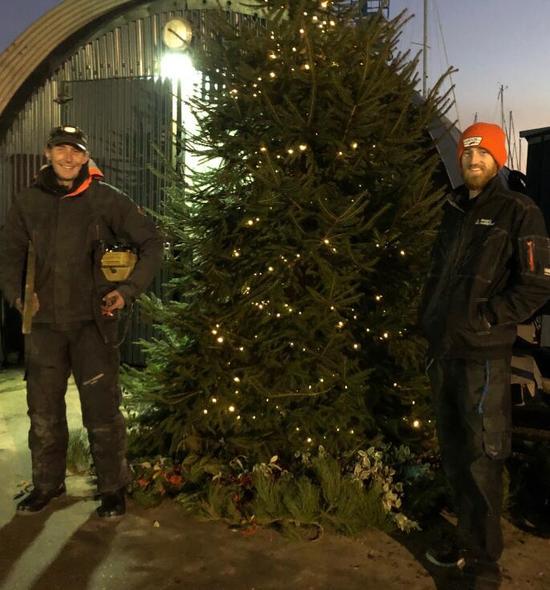 Ollie & James lighting the xmas tree